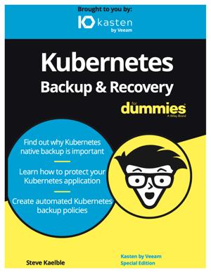 dummies book 2