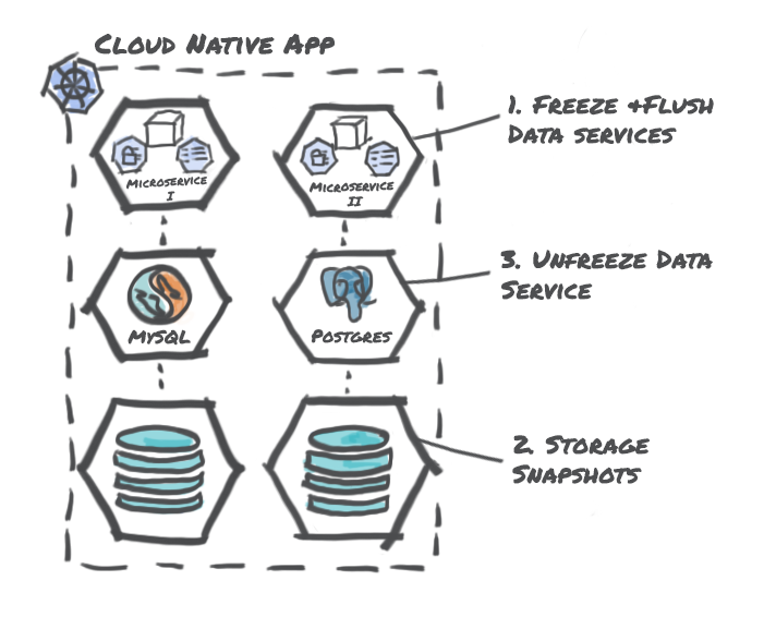 Storage Centric Snapshots with Data Services Hooks